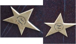 На Площади выпускников ПГУ загорелись новые звезды